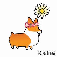 how to draw a cute corgi