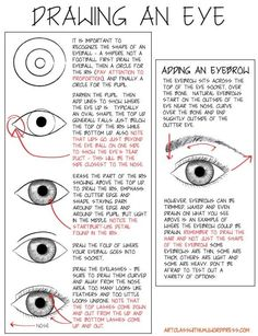 How to Draw an Eye with PDF by bessie