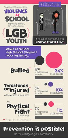 YRBS Infographic LGB School