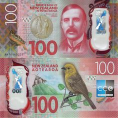 New Zealand currency Dollar, Money Laundering, Foreign Exchange, Old Coins, Financial News, Reptiles And Amphibians, Forex Trading, Cryptocurrency, Branding