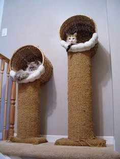 Cats Toys Ideas - Looks pretty easy to make, basket screwed to the top of a cat tree. I could use the big rope/twine that I purchased at Ace to go around the column. Then use the extra carpeting we have for the base possibly around the round or square co Diy Jouet Pour Chat, Cat House Diy, Diy Cat Tree, Cat Trees Diy Easy, Cat Towers, Cat Condo, Cat Scratcher, Cat Room, Pet Furniture
