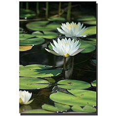 @Overstock - Artist: Patty Tuggle  Title: Lovely Lilies  Product Type: Gallery-wrapped canvashttp://www.overstock.com/Home-Garden/Patty-Tuggle-Lovely-Lilies-Gallery-wrapped-Canvas-Art/4426872/product.html?CID=214117 $46.99