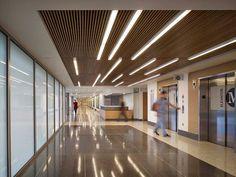 ‼️Mooi licht voor in hal bij liften Ewing-Cole Hospital Architecture, Healthcare Architecture, Architecture Details, Interior Architecture, Interior Design, Medical Design, Healthcare Design, Interior Lighting, Lighting Design