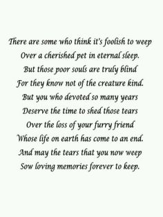 There are some who think it's foolish to weep over a cherish pet in eternal sleep. But those poor souls are truly blind, for they know not of the creature kind. But you who devoted so many years deserve the time to shed those tears over the loss of your furry friend. Whose life on earth as come to and end. And may the tears that you now weep sow loving memories forever to keep.