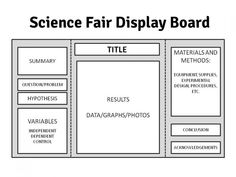 science project layout board