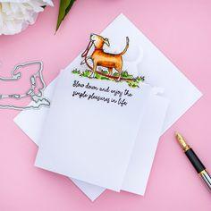 Anita Jeram, Dog Cards, Card Making Tutorials, Die Cut Cards, Crisp Image, Simon Says Stamp, Simple Pleasures, Die Cutting, Cardmaking