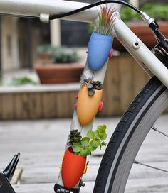 Wearable planters, for you... and your bicycle.