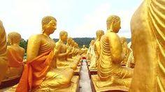 golden buddha's Golden Buddha, Statue, Art, Buddha, Art Background, Kunst, Performing Arts, Sculptures, Sculpture
