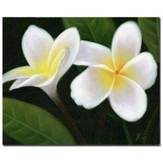 24 in. x 32 in. Hawaiian Lei Flowers Canvas Art