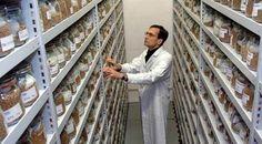 """Gıda güvenliği için """"Tohum Bankası"""" projesi başladı"""