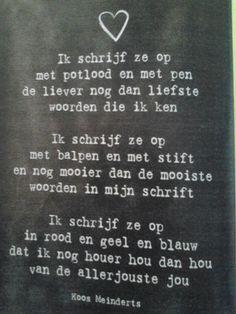 Gedicht Koos Meinderts