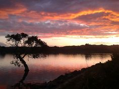 Amazing sunset last week at Whananaki North in New Zealand :) #myownphotgraphy #sunset #shepherdsdelight #whananaki #newzealand