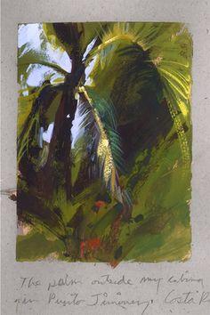 Land Sketch: Costa Rican Palm