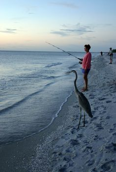 This is how we fish on Sanibel Island by VISIT FLORIDA, via Flickr