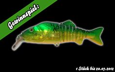 Click the link and tell us until 20.07.2012 where and what kind of fish you want to catch and win one Strike Pro FlexX Phantom sponsored by Pike Master Lures! http://lurevideos.com/strike-pro-flexx-phantom/