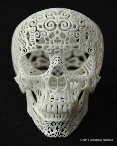 Crania Anatomica Filigre, Joshua Harker