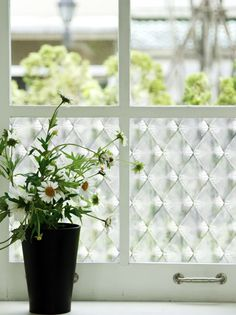 Harry Lozenge Pattern Adhesive Decorative Window Film Glass Film [Made in Japan] Frosted Glass Window, Window Privacy, Apartment Living, Living Room, Window Film, Glass Film, Home Decor Kitchen, Window Treatments, Adhesive
