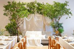 Wedding Stage Backdrop, Backdrops, Xmas, Table Decorations, Bridal, Flowers, Inspiration, Furniture, Banquet