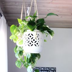 diy hanging planter how to project - use porcelain candle hurricanes as a hanging planter instead.