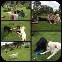 No parque