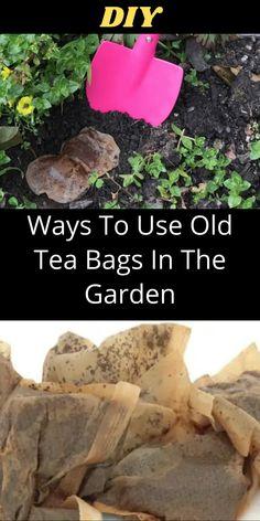 Garden Yard Ideas, Garden Crafts, Lawn And Garden, Garden Projects, Love Garden, Diy Garden Decor, Gardening Tips, Container Gardening, Used Tea Bags