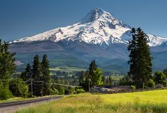 """Mt. Hood"" 