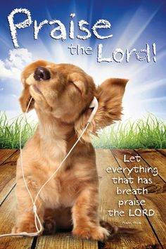 Righteous Dog PRAISE THE LORD (Psalm 150:6) Inspirational Poster ~available at www.sportsposterwarehouse.com