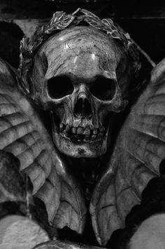 Beyond the Grave...(Source: p1ss, via pegasuses)