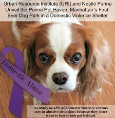 Manhattan Domestic Violence Shelter Unveils Purina Pet Haven Dog Park #sponsored