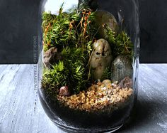 Nestled inside a crystal clear glass vessel is a moss-veiled path of natural stones winding up to secret groves of wooded landscape. This miniature forest scene is comprised of 2 varieties of moss and faux pine trees. Regular room lighting is sufficient; do not place in direct sunlight.  Features: • Measures approx. 8 tall by 5 wide • Easy care; no sun/fertilizer required • Comes with detailed plant care instructions • FREE mini spray bottle • Ships via USPS Priority Mail with tracking i...