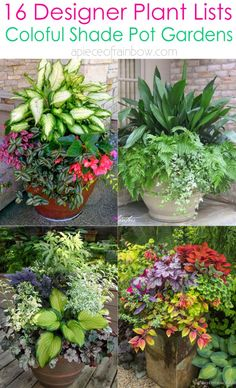 Create beautiful shade garden pots with easy shade loving plants & flowers. 16 colorful mixed container plant lists & great design ideas for shade gardens! – A Piece of Rainbow art design landspacing to plant Shade Plants Container, Shade Garden Plants, Container Flowers, Garden Pots, Container Gardening, Potted Plants For Shade, Vegetable Gardening, Planters Shade, Garden Ideas