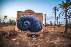 Fun New Murals by ROA Utilize Tunisia's Domed Architecture   PhotoFal
