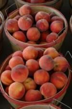 Clarks_Orchards.Baskets_of_Peaches_4582.jpg