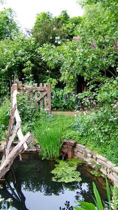 English garden pond