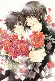 Sekai Ichi Hatsukoi warning yaoi  i dont watch it normaly but this is a great exception if your gonna make one