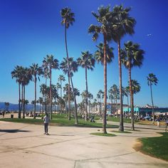 Loving the recreational beachfront of #venicebeach #california #skatespots #travel #holishay