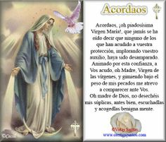 Spanish Prayers, Catholic Religion, Hail Mary, Catholic Prayers, Prayer Board, Papa Francisco, Blessed Mother, Learn English, Spirituality