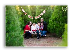 holiday family photo at the christmas tree farm, mini session by simple smiles photography