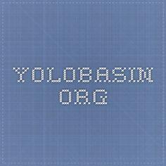 yolobasin.org