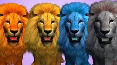 Watch Lion Finger Family Nursery Rhymes, Color Lion Animal Rhymes For Children, Learn Colors Finger Family Watch Dino Attack Short…
