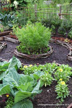 Visningsträdgården Hällans trädgårdsblogg: Trädgårdslandets nya design