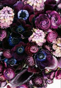 Flowers Photography Peonies Purple Ideas For 2019 Amazing Flowers, My Flower, Pretty Flowers, Purple Flowers, Flower Art, Flower Power, Bouquet Flowers, Purple Hues, Paper Flowers