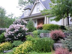 Stellar Landscapes Sloped Backyard, Foundation Planting, Landscaping Company, Terrace Garden, Horticulture, Innovation Design, Water Features, Building Design, Curb Appeal