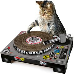DJ Cat Scratch Turntable --- This hilarious scratching post forces your cat to act like a DJ working a turntable.