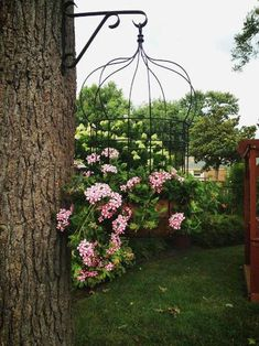 Create a birdcage planter for your patio… You have seen them,…rusty, dusty birdcages, pushed to the back of a thrift shop shelf. Next time, snap one up! Spray paint it, or not, depend…