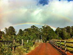 Maui Upcountry Rainbow