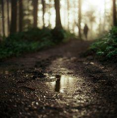 what lies ahead by katez0r