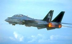 """Navy Grumman Tomcat of the squadron, nicknamed """"The Jolly Rogers"""". Military Jets, Military Aircraft, Fighter Aircraft, Fighter Jets, Tomcat F14, Naval Aviator, Navy Aircraft, Jolly Roger, Jet Plane"""