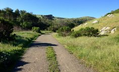 Harmony Headlands Trail San Luis Obispo County, Central California, Pacific Coast, State Parks, Acre, Trail, Country Roads, United States, America