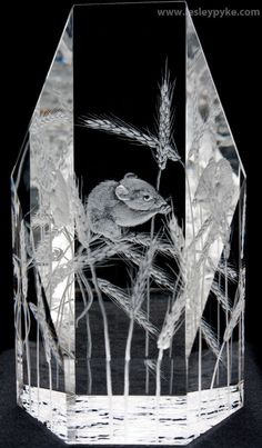 Lesley Pyke Glass engravings - For Sale